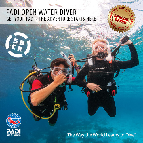 Buzo PADI Open Water
