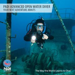 learn-to-dive-discover-scuba-diving
